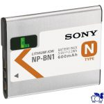 Sony Battery NP1