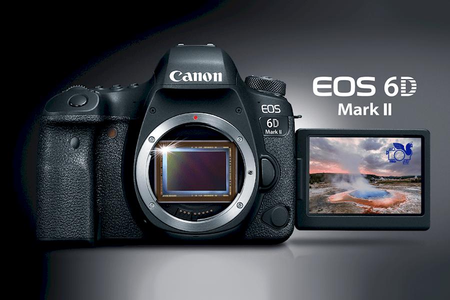Canon EOS 6D Mark II(5